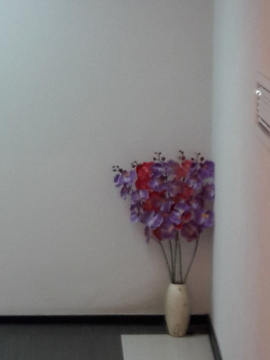 Офисное помещение 16,2 кв.м. в центре Балашихи - Фото 2
