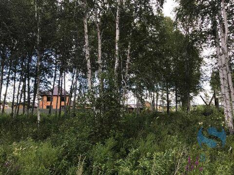 Продажа участка, Тюмень, Деревня Княжево - Фото 5