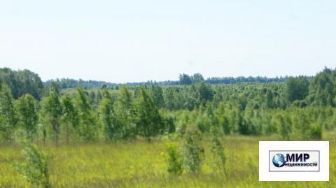 Земельное угодие 11,2 Га. на Новорижском шоссе. 125 км. от МКАД. кфх. - Фото 2