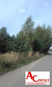 Участок в селе Чертовицы - Фото 4