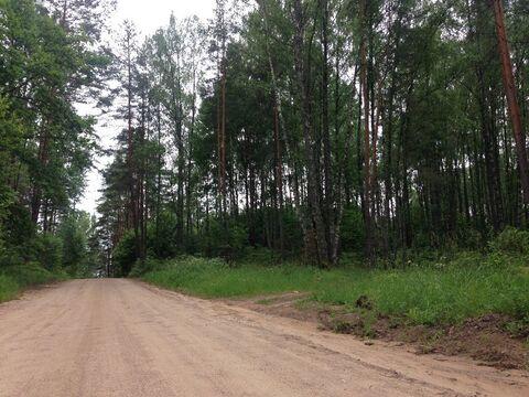 Продажа участка, Алуферово, Пушкиногорский район - Фото 5