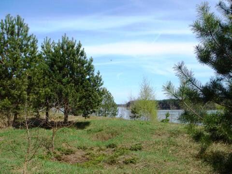 Земельный участок 17га под строительство на берегу Волги - Фото 5