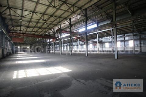 Аренда помещения пл. 4700 м2 под склад, производство, , офис и склад, . - Фото 3