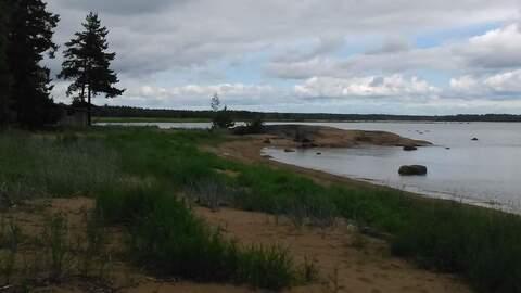 Продается земля 1330 соток, поселок Большой Бор - Фото 4