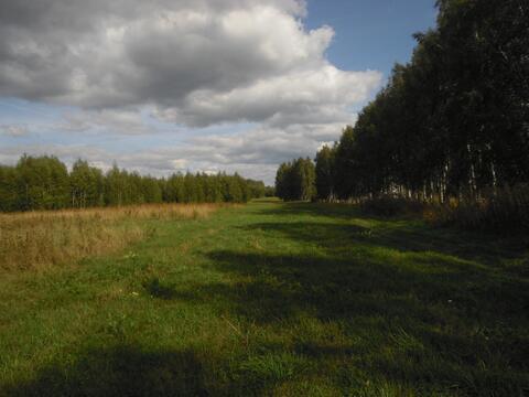 Усадьба 8 га. в 90 км от Нижнего Новгорода - Фото 4