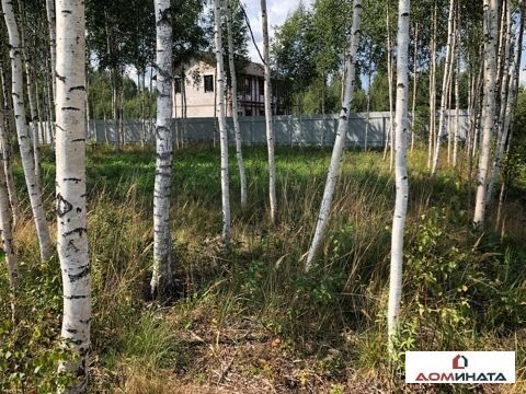 Продажа участка, Лепсари, Всеволожский район, Лепсари - Фото 3