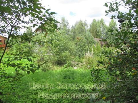 Участок, Ярославское ш, 46 км от МКАД, Красноармейск. Ярославское . - Фото 3