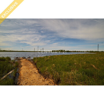 Продажа земельного участка 14 соток на первой береговой линии реки Шуя - Фото 2