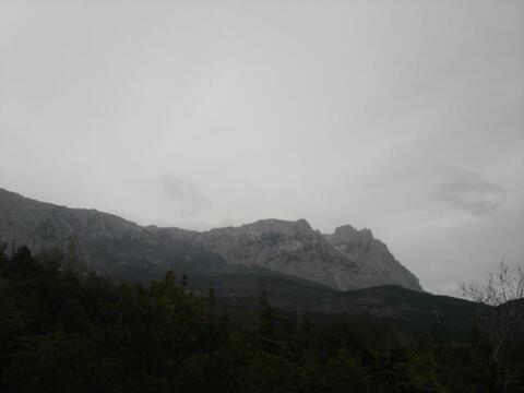 Участок в Алупке - Фото 5