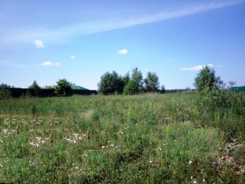 15 соток возле Голицыно 30 км от МКАД Минское шоссе - Фото 1