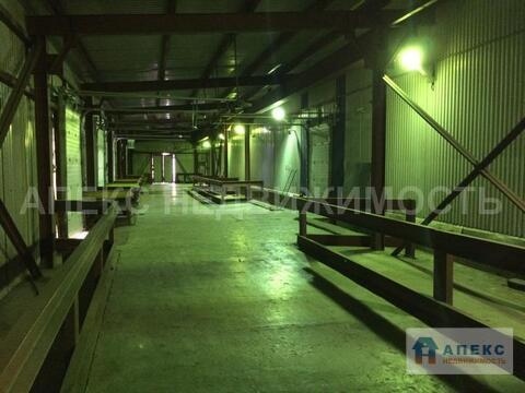 Продажа помещения пл. 14000 м2 под склад, производство, , холодильный . - Фото 4