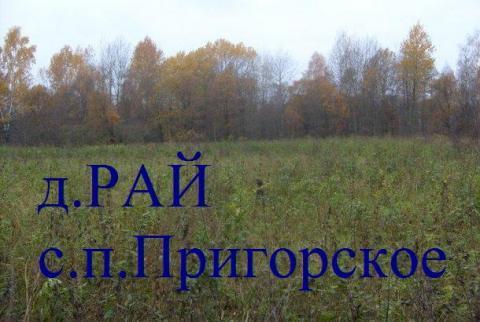 Земельный участок д. Рай (ИЖС) Смоленская обл.