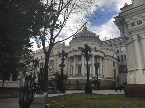 Представительский особняк на Волхонке - Фото 1