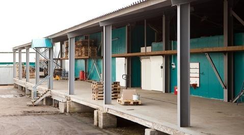 Хлебопекарный комбинат 9150 м2 в Лобне, - Фото 5