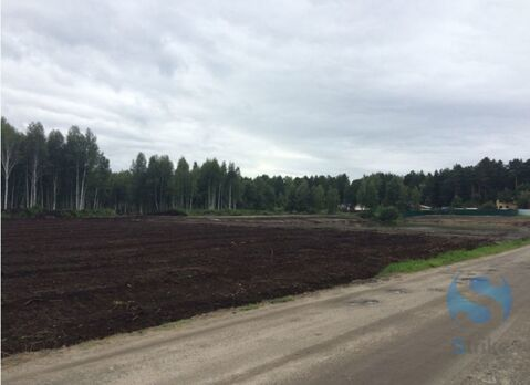 Продажа участка, Тюмень, Тер нст Сосновая поляна - Фото 1