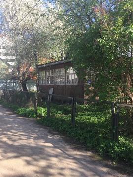 Домодедово, СНТ Мечта (в городе), 6 сот, домик 50м2. Свет, вода. - Фото 1