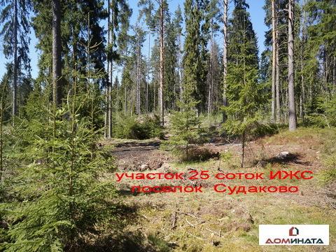 Участок 25 соток ИЖС пос. Судаково - Фото 2