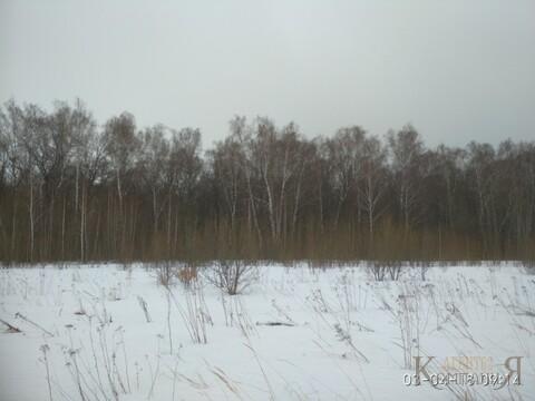 Продам участок в Рязанской области в Рыбновском - Фото 1