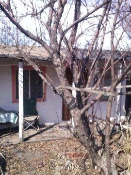 Продам сад с капитальным домом на с-з - Фото 4