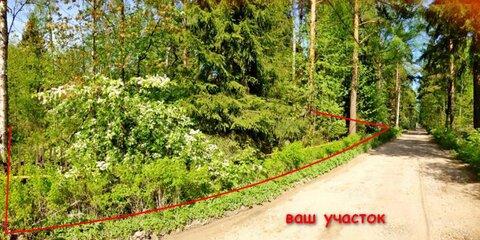 Участок 16 сот ИЖС Всеволожский район г. Всеволожский ул. Баркановская - Фото 2