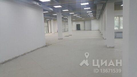 Аренда торгового помещения, Хабаровск, Ул. Пугачева - Фото 2