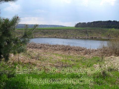 Участок, Можайское ш, 72 км от МКАД, Васильевское д. ( Рузский р-н), . - Фото 4