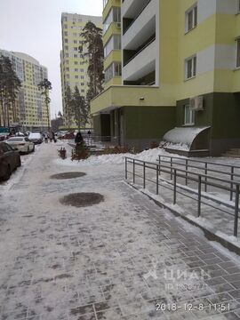 Студия Московская область, Раменское Высоковольтная ул, 21 (33.0 м) - Фото 2