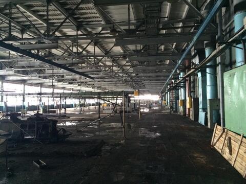 Сдам производственно-складскую площадь 3000 кв. м. - Фото 5