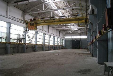 Продам производственно-складскую базу 8666 кв. м - Фото 1
