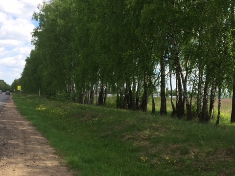 Продам участок 8 соток у реки Ока - Фото 2