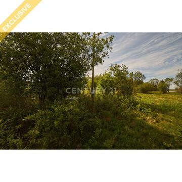 Продажа земельного участка 14 соток на первой береговой линии реки Шуя - Фото 5
