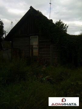 Продажа дома, Турская Горка, Шимский район - Фото 4