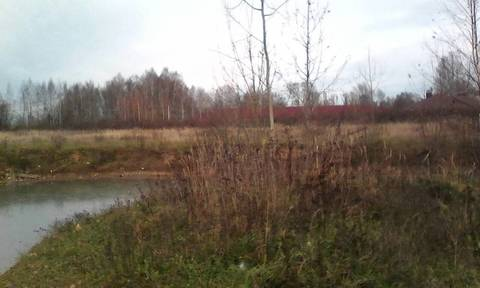Продаётся земельный участок 20 сот. в д. Григорьевское Левцовский с/о . - Фото 3