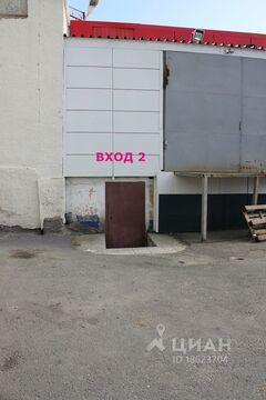 Продажа торгового помещения, Курган, Ул. Бурова-Петрова - Фото 2