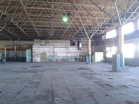 Сдам производственно-складские площади 7667 кв.м. - Фото 2