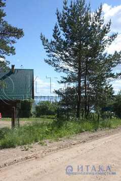 Продажа дома, Кривая Клетка, Демянский район - Фото 3