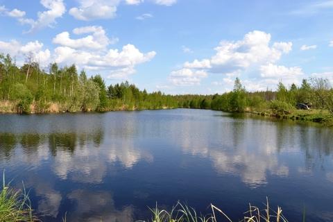 Участок в Ольховке 4,77 Га на берегу водного канала - Фото 2
