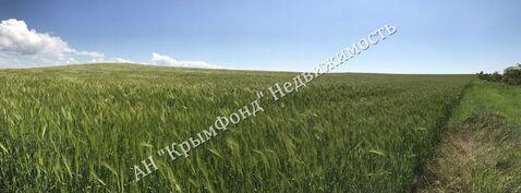 Земельный участок сельхоз назначения, 2,8 Га, с. Вилино - Фото 1