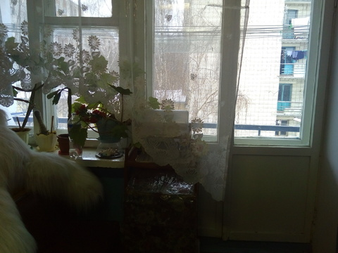 Комната на Тайфуне - Фото 3