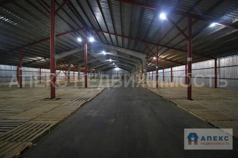 Аренда помещения пл. 3000 м2 под склад, склад ответственного хранения, . - Фото 5