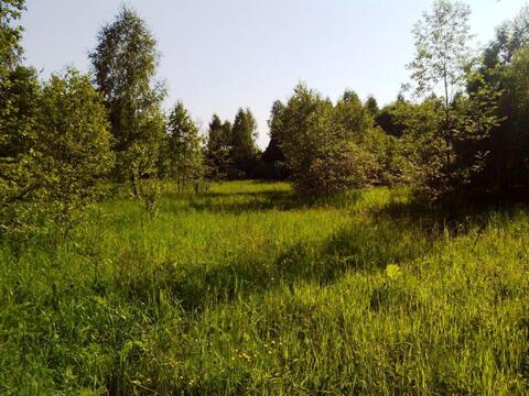 Лесной участок 6 Га (600 соток) на берегу озера. - Фото 4
