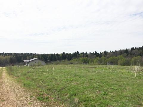Участок 40 соток село Костино, 60 км. от МКАД по Дмитровскому шоссе. - Фото 3