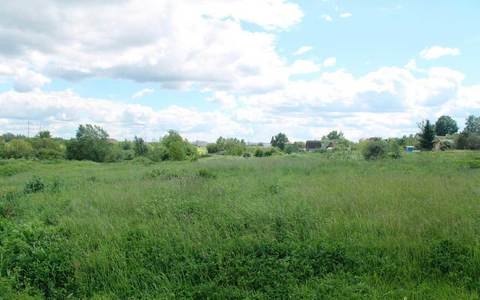 Продается земельный участок, площадью 15 соток в Дмитрове - Фото 5