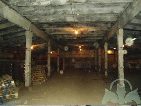 Аренда склада, Кочугино, Солнечногорский район, Деревня Кочугино - Фото 5