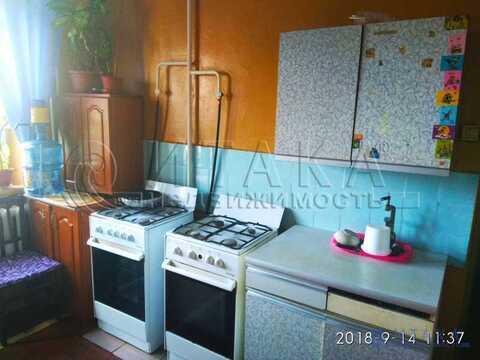 Продажа комнаты, м. Ладожская, Заневский пр-кт. - Фото 3