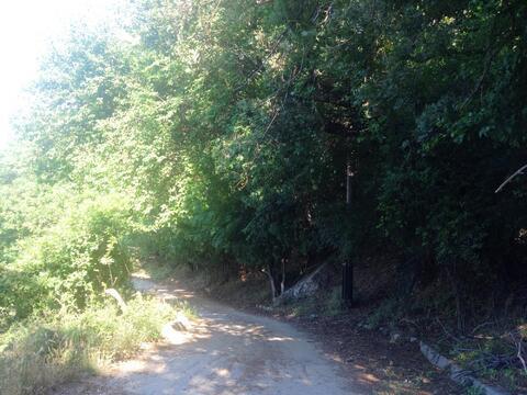 6 соток рядом хвойный лес, с панорамным видом, подъездом, коммуникациями - Фото 3