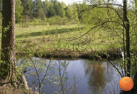 Продается участок, Горьковское шоссе, 240 км от МКАД - Фото 3