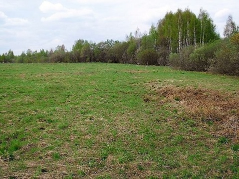 31,5 га кфх в Переславле-Залесском, вблизи д. Потанино - Фото 1