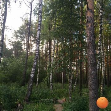Продается участок, Волоколамское шоссе, 19 км от МКАД - Фото 4
