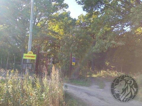 Участок 5,5 соток на краю леса, СНТ Дубрава, Климовск, Подольск. - Фото 1